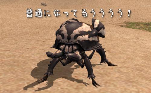 普通になってる甲虫の足