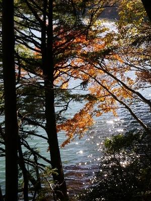湯ノ湖16