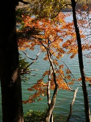 湯ノ湖17