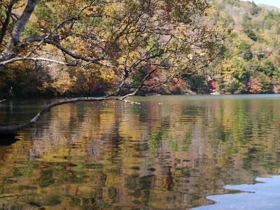 湯ノ湖21