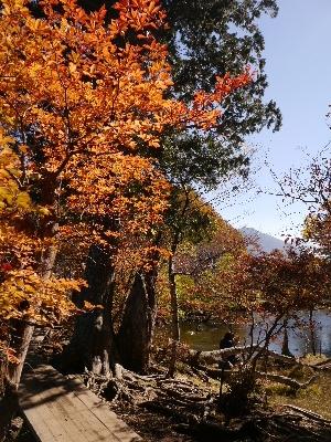 湯ノ湖2−5