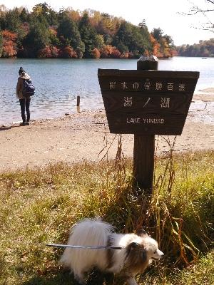 湯ノ湖2−28