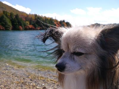 湯ノ湖2−34