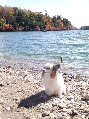 湯ノ湖2−35