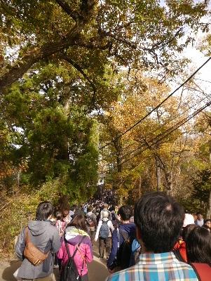 高尾山24
