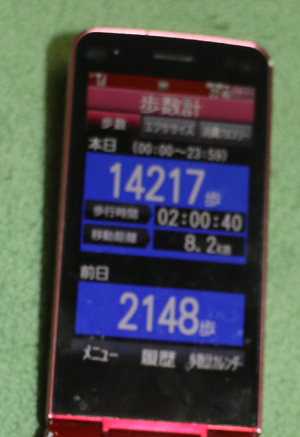 003-4-6.jpg