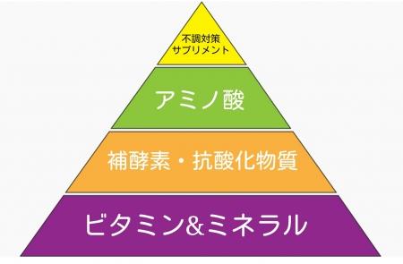 サプリメントの正しい摂取の仕方図