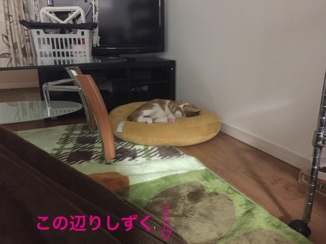 fc2blog_20160223123855e93.jpg