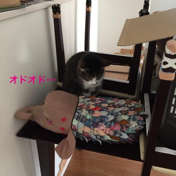 fc2blog_20160224111609edb.jpg