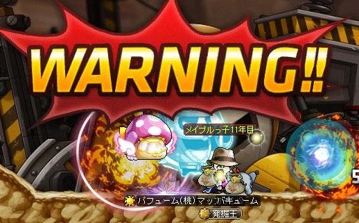 Maple14538a.jpg