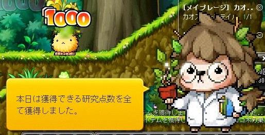 Maple14554a.jpg