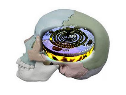 頭蓋骨の展望台
