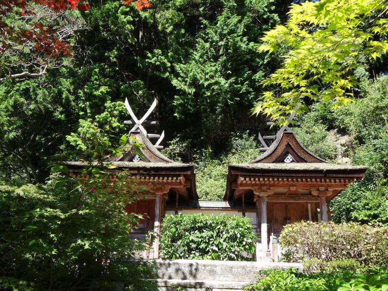 円成寺10