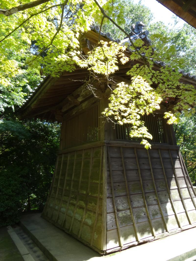 円成寺12