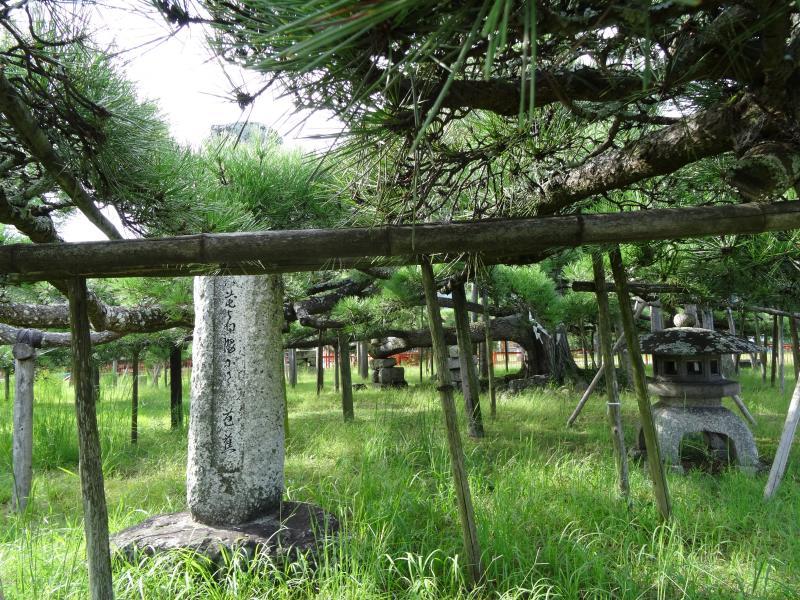 唐崎神社5