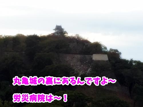 丸亀城の裏