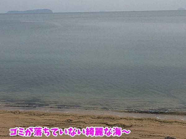 ゴミの落ちていない海