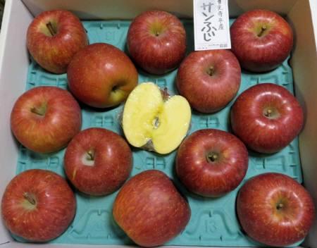2015_11 28_信州リンゴ・2