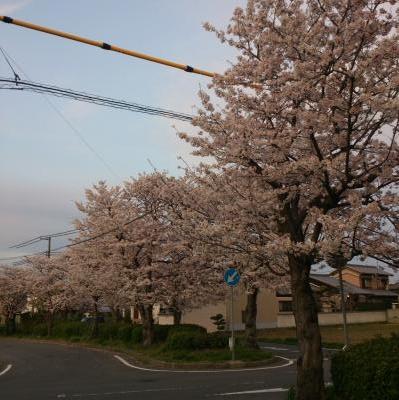 16-04-06-18-13-02-280_photo_convert_20160406203927.jpg