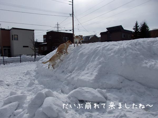 yukiyama_201603131807062e7.jpg