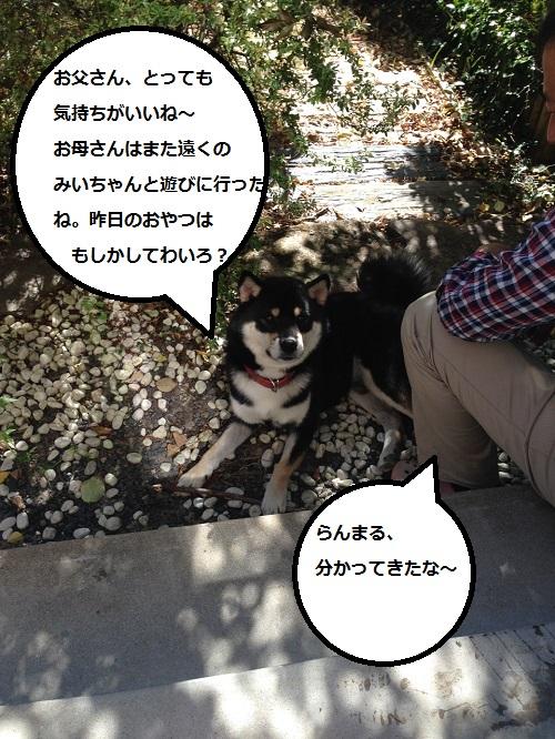 まるちゃん2015103101
