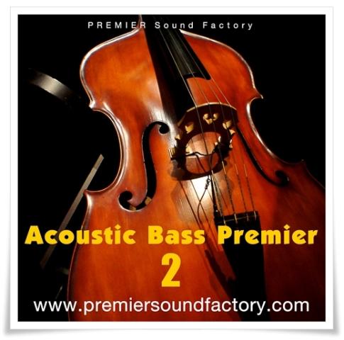 Acoustic_Bass_Premier.jpg