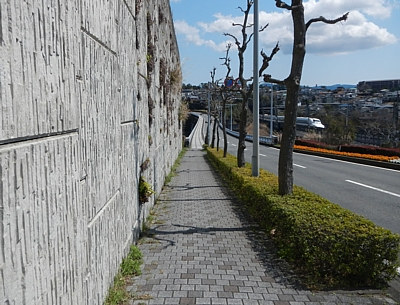201604_mishimaSKYW_02.jpg