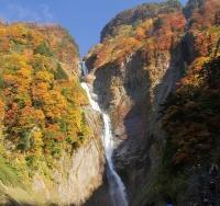 称名滝の紅葉