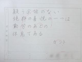 P1130336-1.jpg