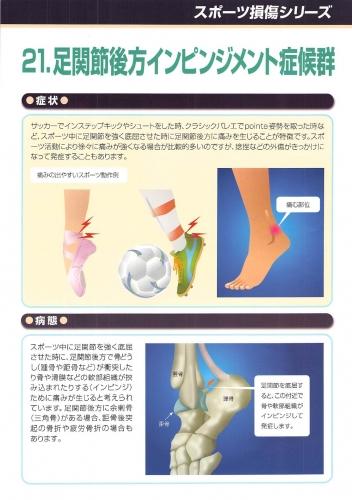 足関節後方インピンジメント症候群 表0001