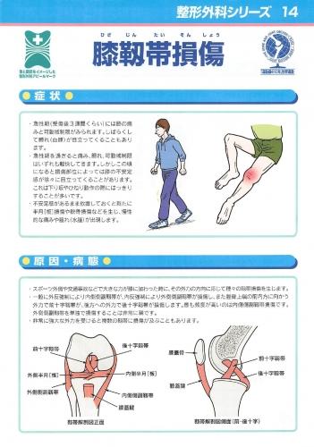 膝靭帯損傷 表0001