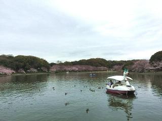 160403_0050湖畔の風景VGA
