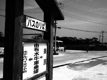 写真2014(№371)1
