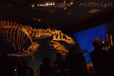 国立科学博物館恐竜博201603e