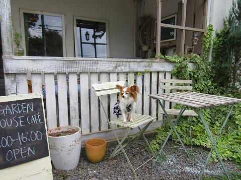 ガーデンハウスカフェで。15.10.1