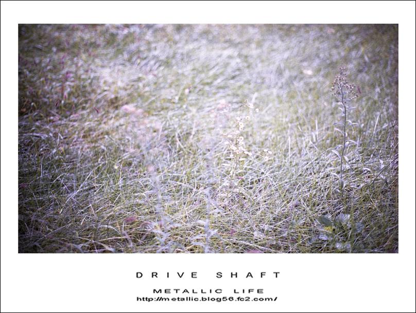mlsv20151005-1