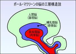 yjimage(1).jpg