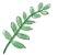 plantkinome.jpg