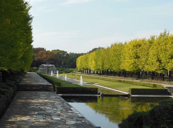 秋の景色-1