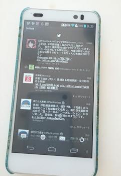 DSCN309103.jpg