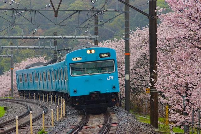 160404 JRW 103-240 hanwa yamanakadani-1
