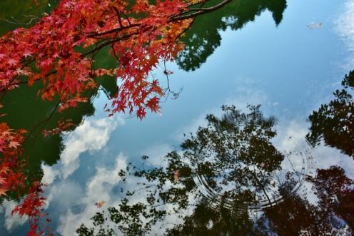 水鏡 (3)