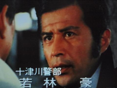 下り特急富士殺人事件