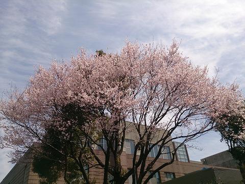 s-16-03-22-12-16-45-514_photo.jpg