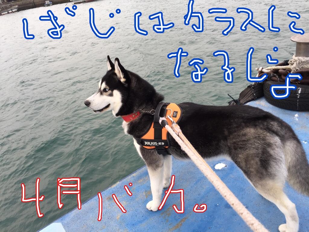 fc2blog_20160401031532201.jpg
