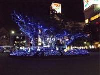 20151111武蔵堺駅イルミネーション1