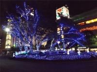 20151111武蔵堺駅イルミネーション2