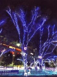 20151111武蔵堺駅イルミネーション4