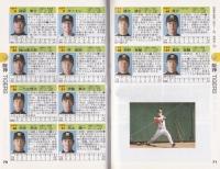 2013プロ野球手帳_06