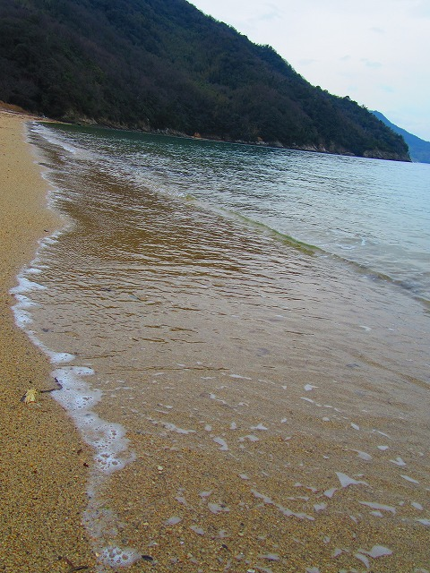 粟島の西浜海岸波 28.3.23